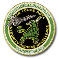 1Patch-airforce